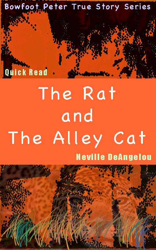 The Rat And The Alley Cat
